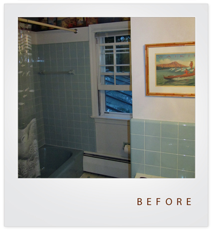 Bath Renovation Wayne